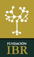 Fundación IBR