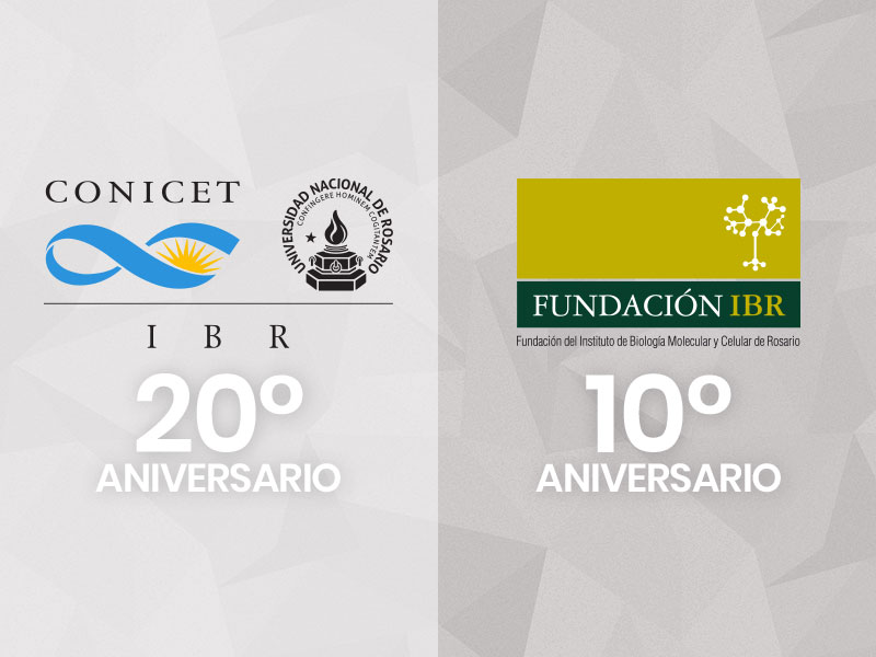Aniversarios de IBR y Fundación IBR